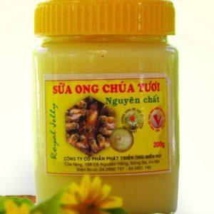 sua ong chua