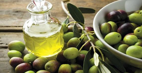 giá quả oliu tại hà nội